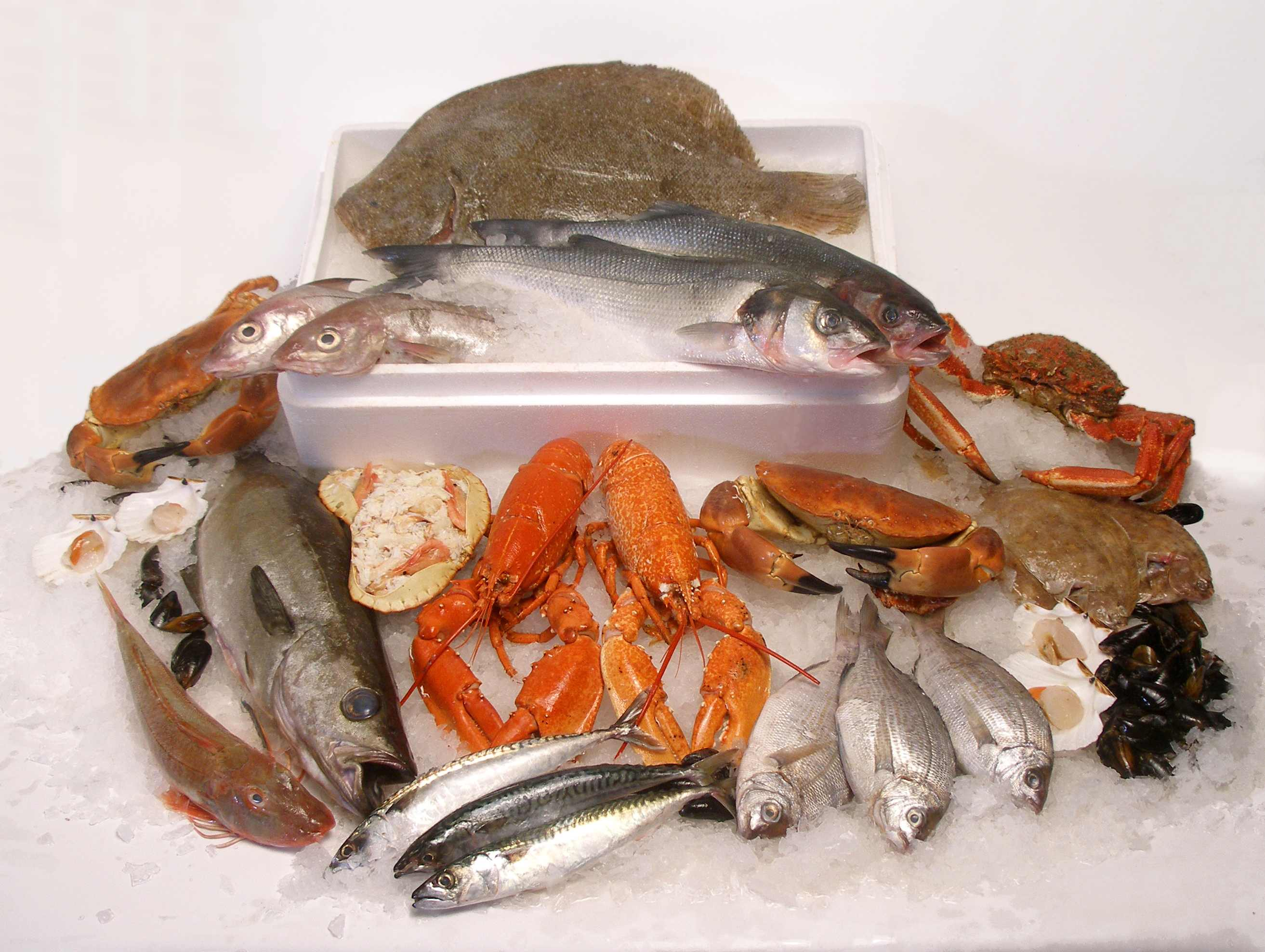 Fish and seafood beyond the pasty for How do fish eat